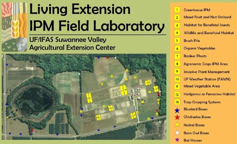 IPM field Lab